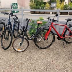 Vélos Musculaires - Choix varié de modèles et options